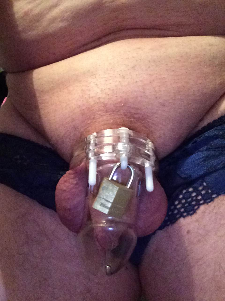 chastity bitch
